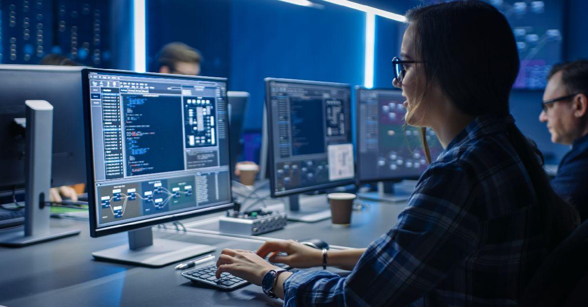 ¿que roles conforman un equipo de datos?