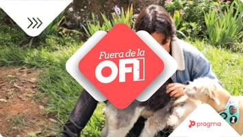 MM_T_fuera_ofi_joan