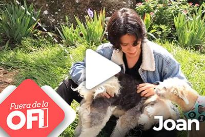t_fuera_ofi_joan