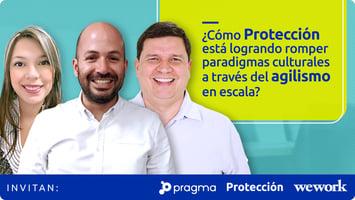 Cover_panel_prote3