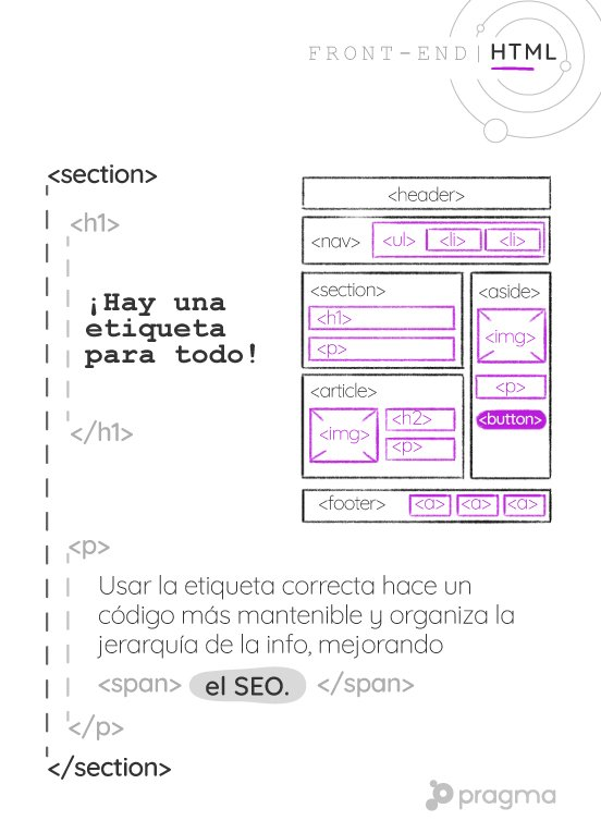 06_flashcard_frontend2