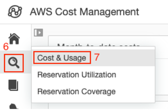 Cost & Usage.