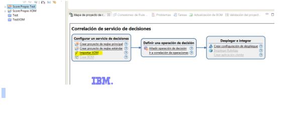 IBM ODM