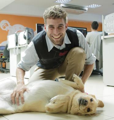 Perro en la oficina Petfriendly
